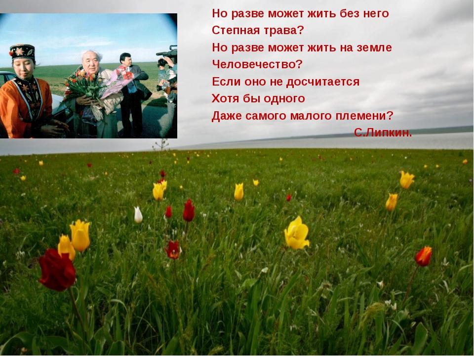 Но разве может жить без него Степная трава? Но разве может жить на земле Чело...