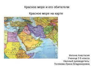 Красное море и его обитатели Красное море на карте Митина Анастасия Ученица 3