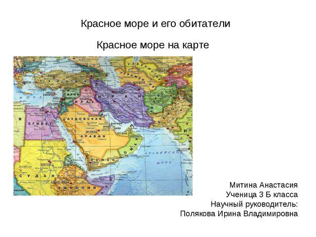 Красное море и его обитатели Красное море на карте Митина Анастасия Ученица 3...