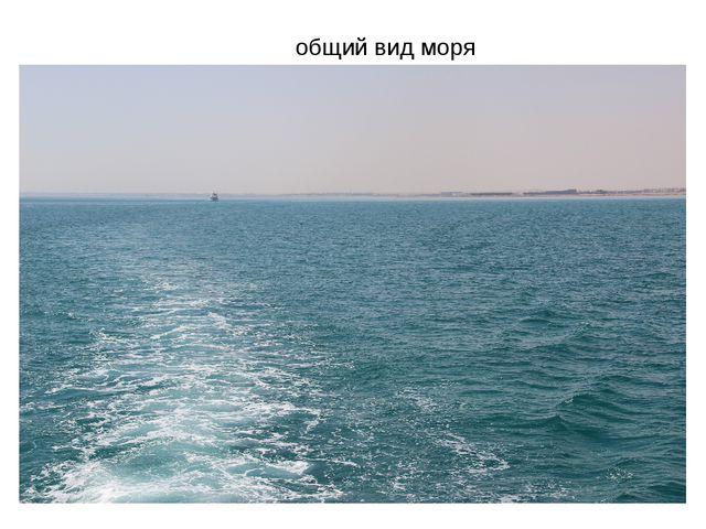 общий вид моря