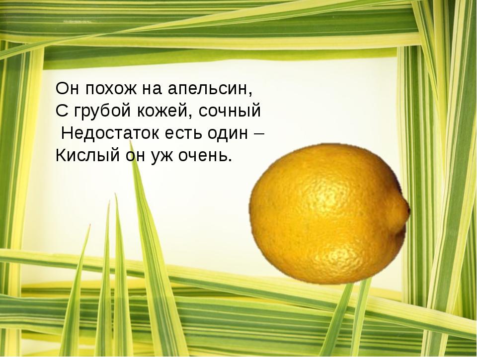 Он похож на апельсин, С грубой кожей, сочный Недостаток есть один – Кислый о...