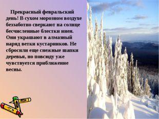 Прекрасный февральский день! В сухом морозном воздухе беззаботно сверкают на