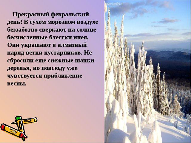Прекрасный февральский день! В сухом морозном воздухе беззаботно сверкают на...