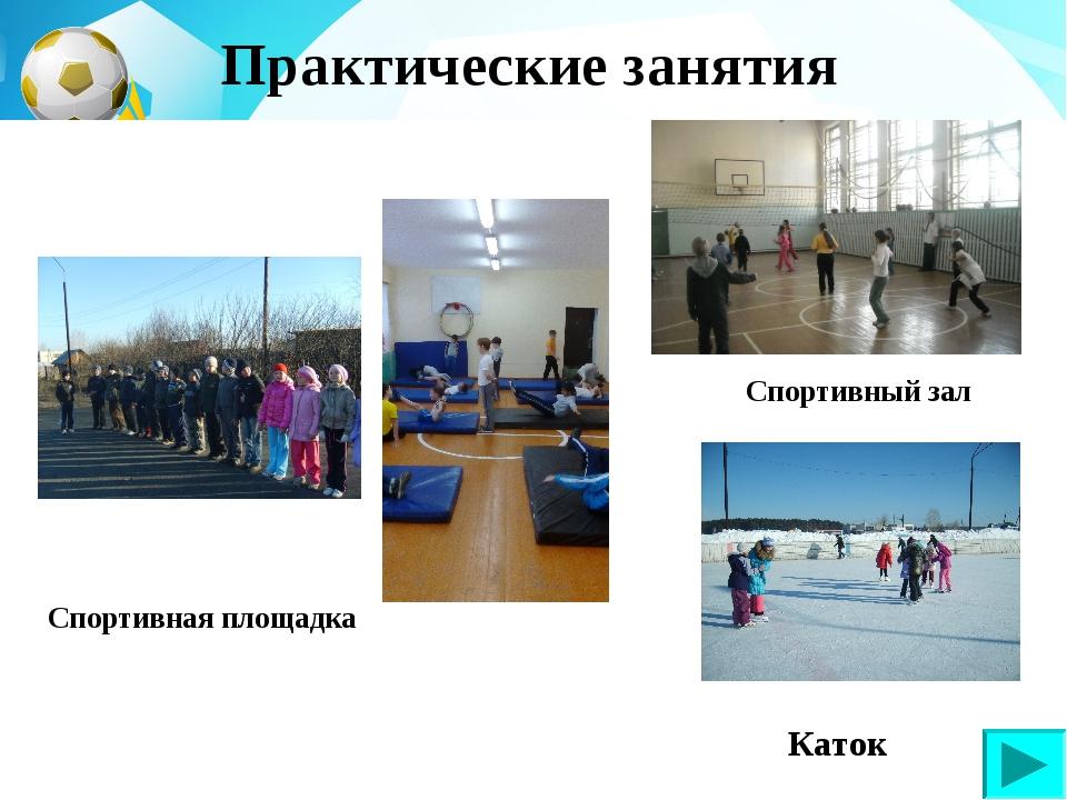 Спортивный зал Спортивная площадка Каток Практические занятия