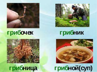 грибочек грибник грибница грибной(суп)