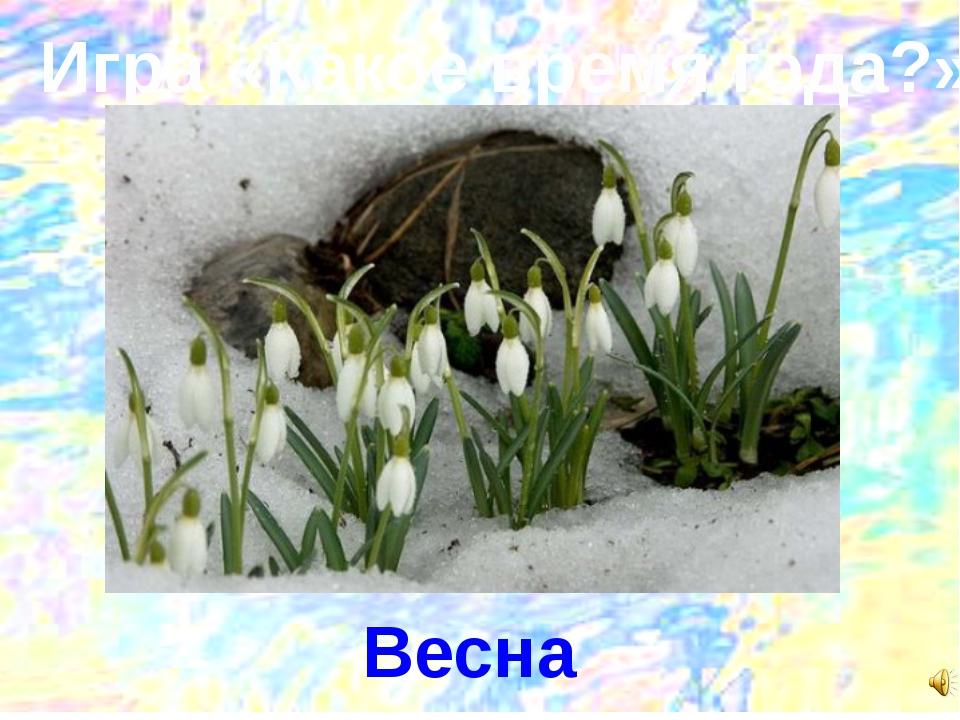Игра «Какое время года?» Весна