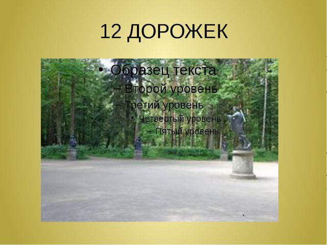 12 ДОРОЖЕК