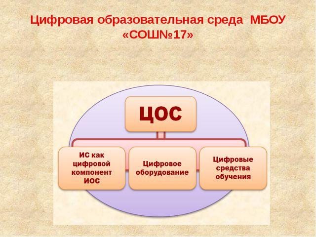 Цифровая образовательная среда МБОУ «СОШ№17»