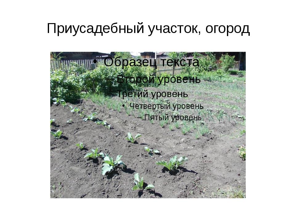 Приусадебный участок, огород