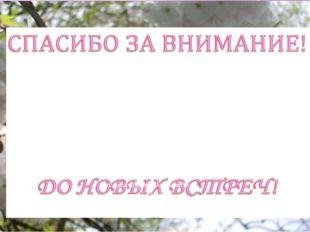МБДОУ «Детский сад общеразвивающего вида № 147» - уютный дом, где всегда цари