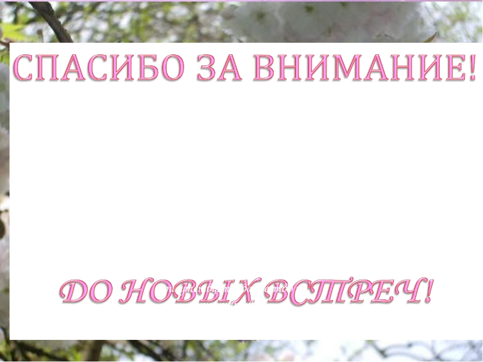 МБДОУ «Детский сад общеразвивающего вида № 147» - уютный дом, где всегда цари...