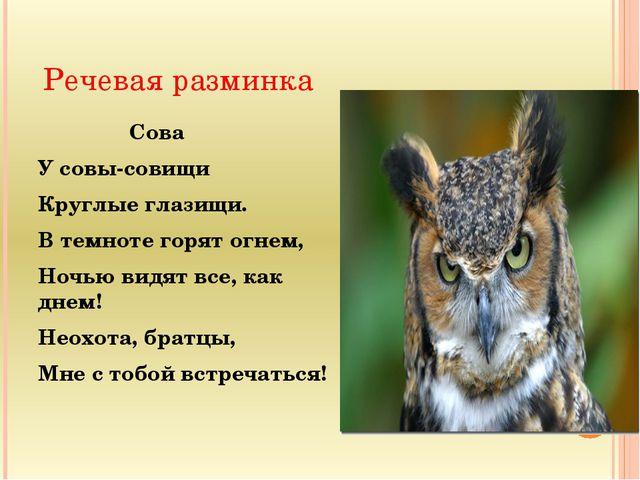 Речевая разминка Сова У совы-совищи Круглые глазищи. В темноте горят огнем, Н...