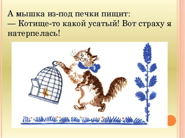 А мышка из-под печки пищит: — Котище-то какой усатый! Вот страху я натерпелась!