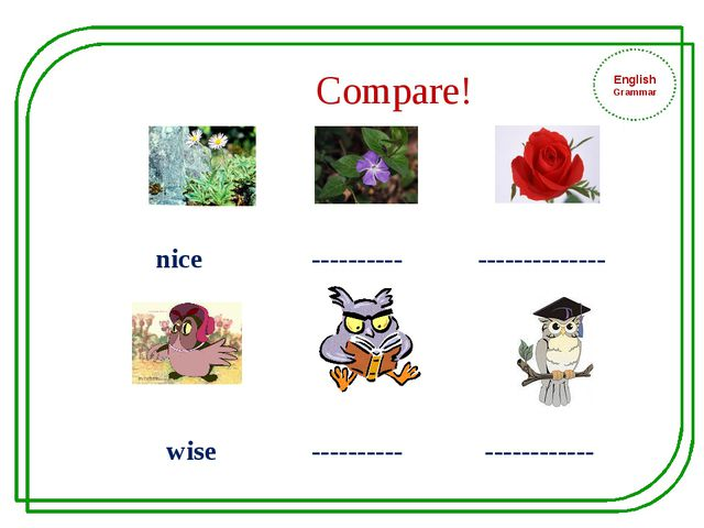 Compare! nice ---------- -------------- wise ---------- ------------ English...