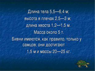 Длина тела 5,5—6,4 м; высота в плечах 2,5—3 м; длина хвоста 1,2—1,5 м. Масса