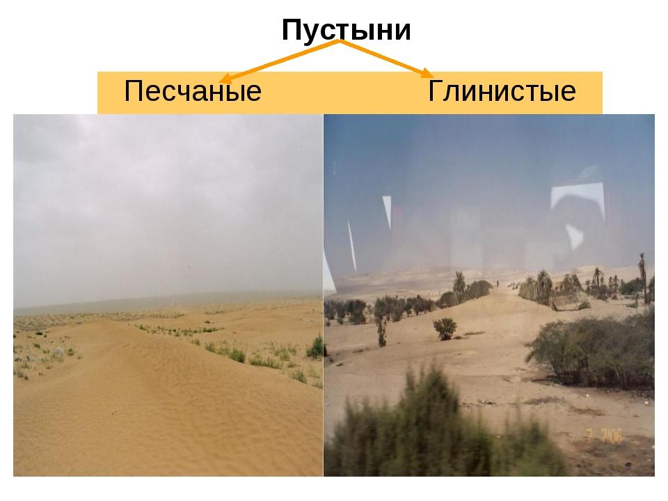 Пустыни Песчаные Глинистые
