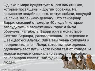 Однако в мире существует много памятников, которые посвящены и другим собакам