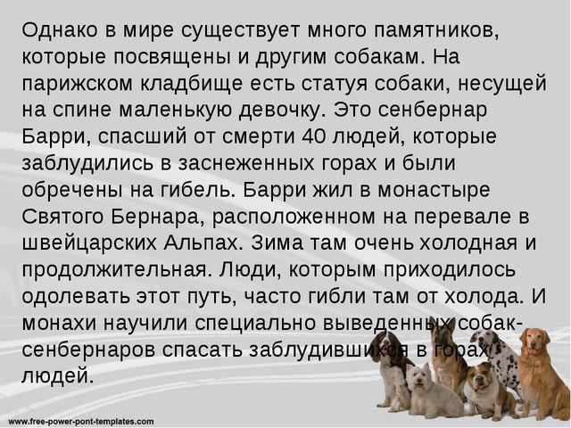 Однако в мире существует много памятников, которые посвящены и другим собакам...