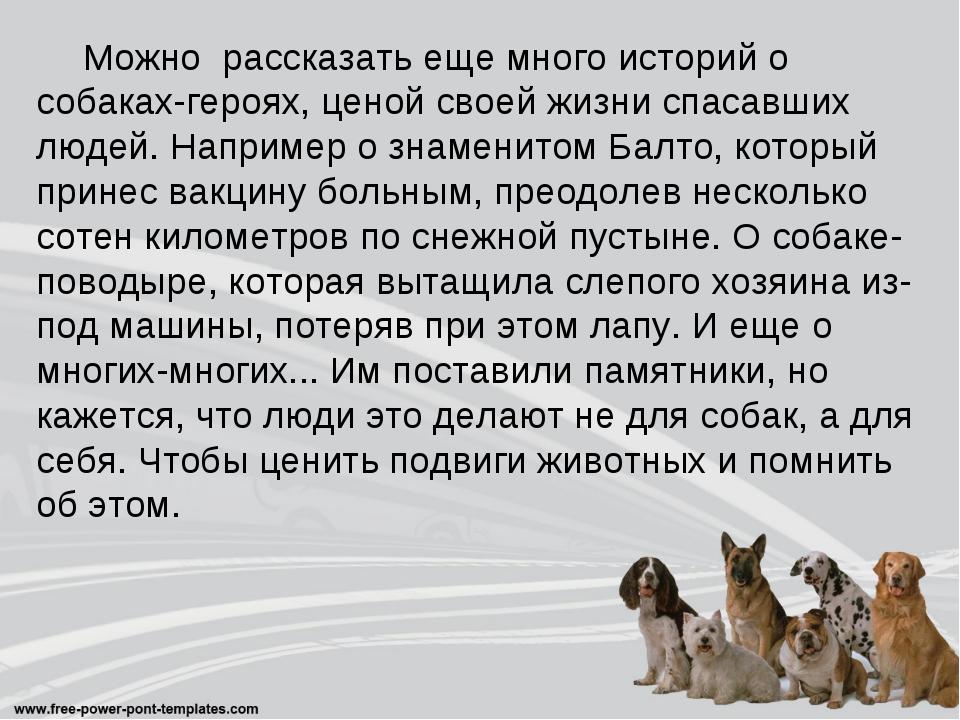 Можно рассказать еще много историй о собаках-героях, ценой своей жизни спаса...