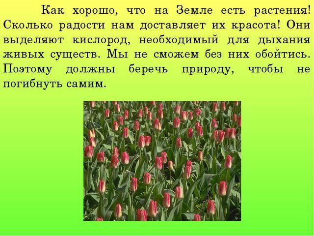 Как хорошо, что на Земле есть растения! Сколько радости нам доставляет их кр...