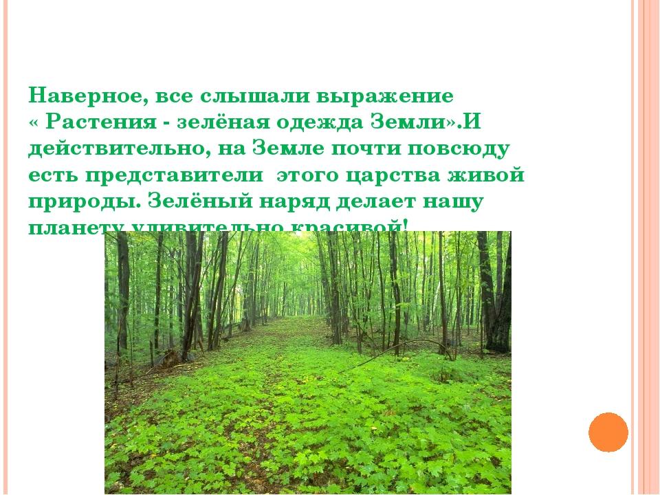 Разнообразие растений Наверное, все слышали выражение « Растения - зелёная од...