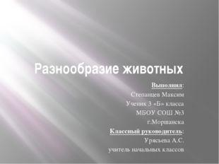 Разнообразие животных Выполнил: Степанцев Максим Ученик 3 «Б» класса МБОУ СОШ