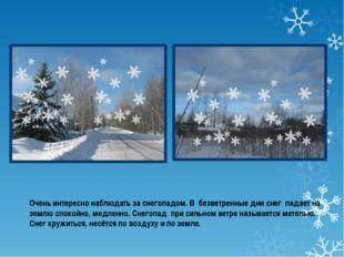 Очень интересно наблюдать за снегопадом. В безветренные дни снег падает на з