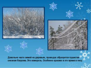 Довольно часто зимой на деревьях, проводах образуется пушистая снежная бахром