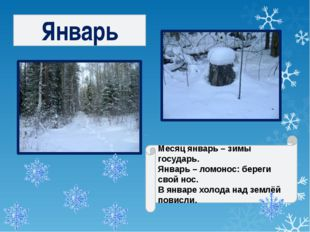 Январь Месяц январь – зимы государь. Январь – ломонос: береги свой нос. В янв