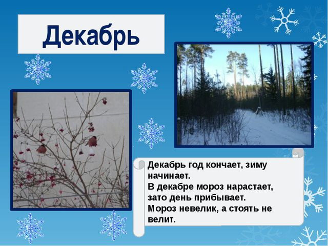 Декабрь Декабрь год кончает, зиму начинает. В декабре мороз нарастает, зато...