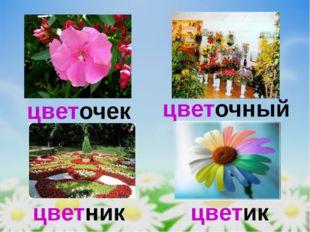 цветочек цветочный цветник цветик