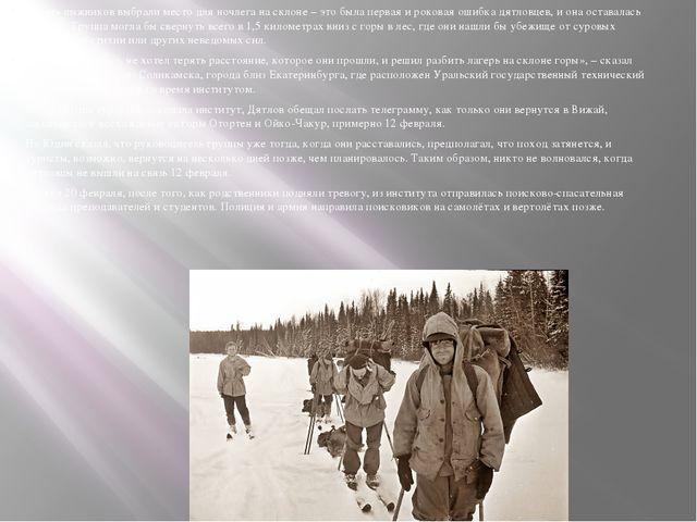Девять лыжников выбрали место для ночлега на склоне – это была первая и роков...