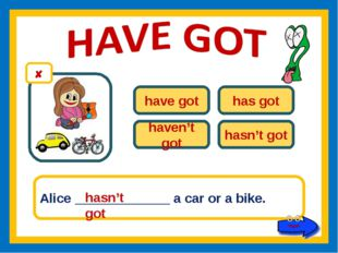have got has got haven't got hasn't got Alice _____________ a car or a bike.