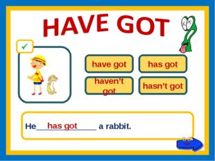 have got has got haven't got hasn't got He_____________ a rabbit. has got