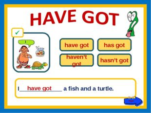 have got has got haven't got hasn't got I_____________ a fish and a turtle. h
