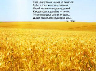 Край наш чудесен, нельзя не дивиться; Буйно в полях колосится пшеница… Нашей