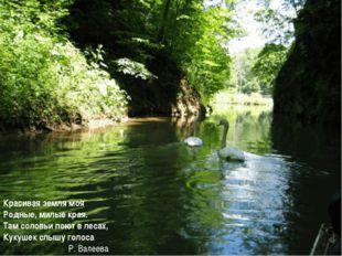 Красивая земля моя Родные, милые края. Там соловьи поют в лесах, Кукушек сл