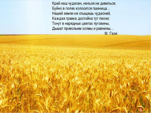 Край наш чудесен, нельзя не дивиться; Буйно в полях колосится пшеница… Нашей...