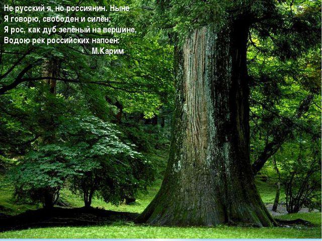 Не русский я, но россиянин. Ныне Я говорю, свободен и силён: Я рос, как дуб...