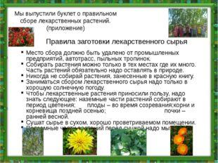 Мы выпустили буклет о правильном сборе лекарственных растений. (приложение) П