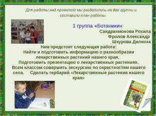 1 группа «Ботаники» Сандрахмонова Рохила Фролов Александр Шкурова Дилноза На