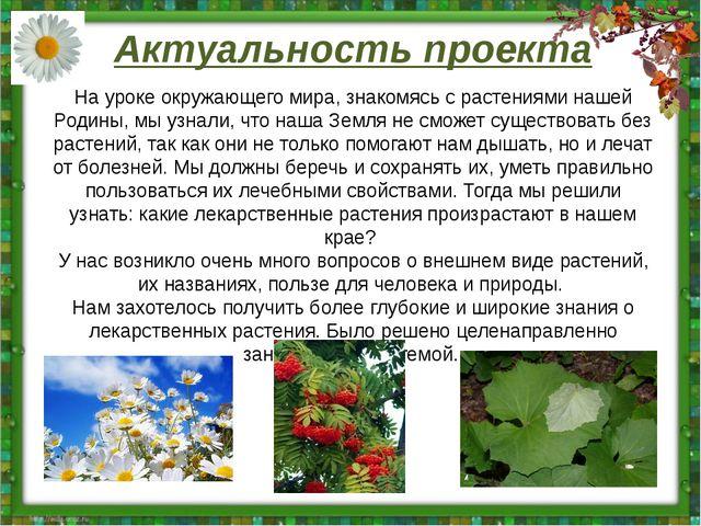 Актуальность проекта На уроке окружающего мира, знакомясь с растениями нашей...