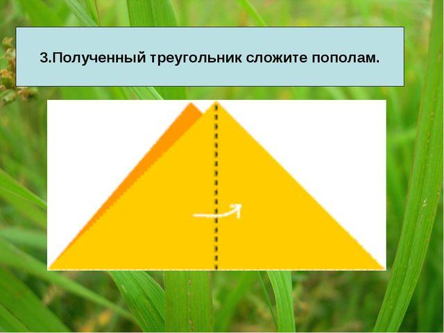3.Полученный треугольник сложите пополам.