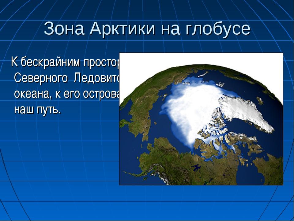 северно ледовитый океан на глобусе фото #2