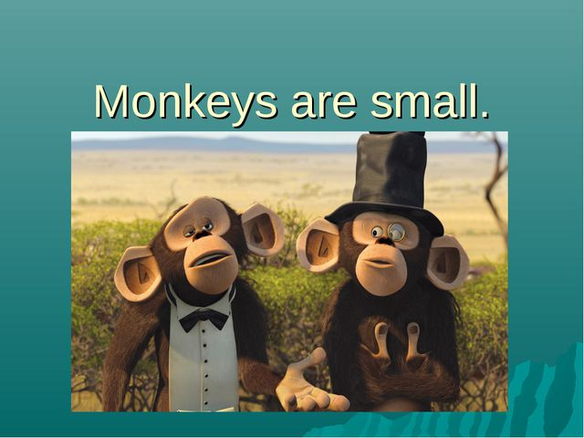 Monkeys are small.