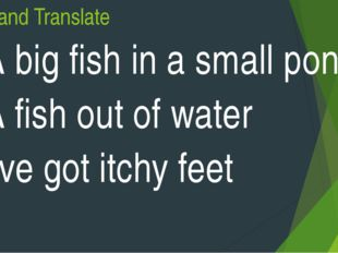 Read and Translate A big fish in a small pond A fish out of water I've got it