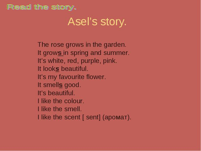 Asel's story. The rose grows in the garden. It grows in spring and summer. It...