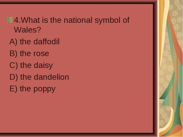 4.What is the national symbol of Wales? A) the daffodil B) the rose C) the da...