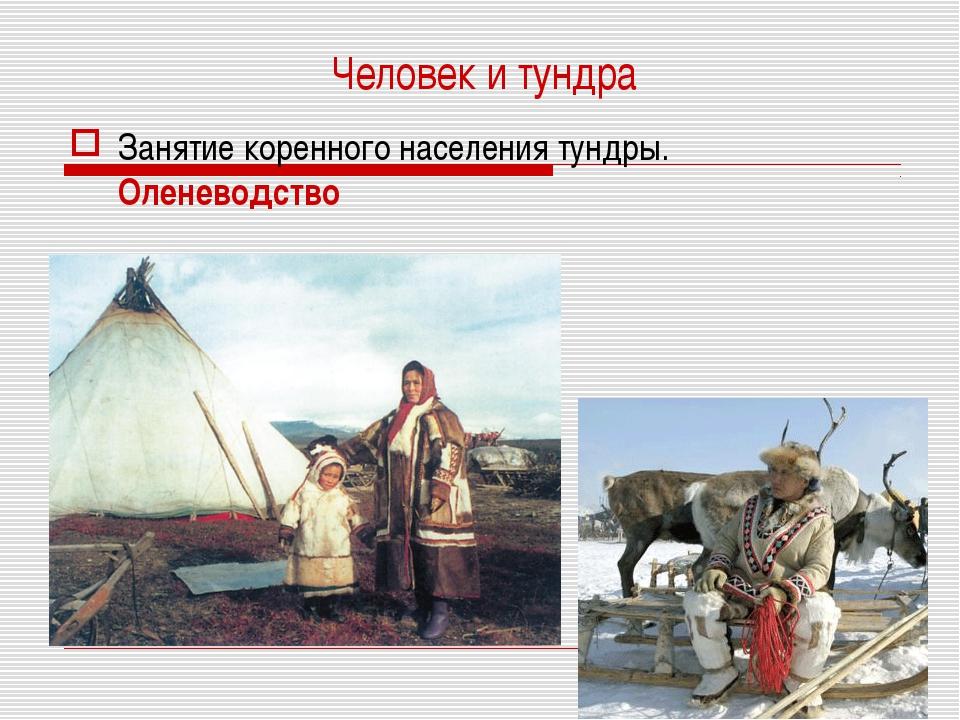 Человек и тундра Занятие коренного населения тундры. Оленеводство