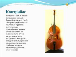 Контрабас Контрабас - самый низкий по звучанию и самый большой по размеру (до